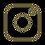 iconfinder_Instagram_3709561_edited.png