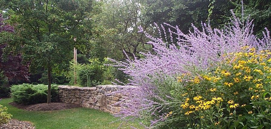 Native plants and barnstone wall