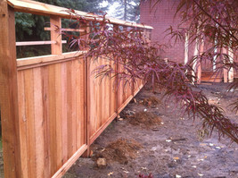 Cedar Fence. Wood Fence. Privacy Fence. Fence Contractor