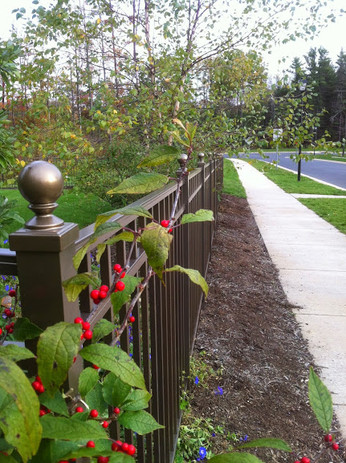 Aluminum Fence. Fence Contractor