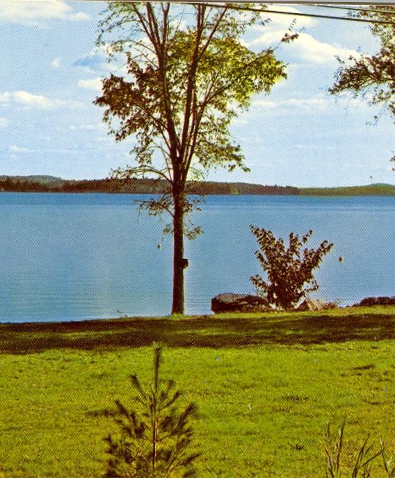Long Lake View from North Bridgton Postcard (1965)