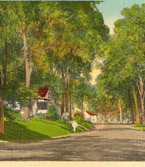 Postcard Showing North Bridgton Main Street