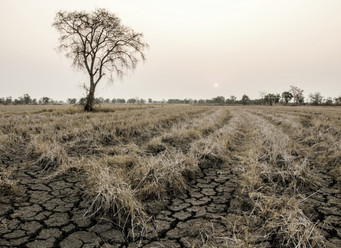 A Seismic Shift on Climate Financial Risk