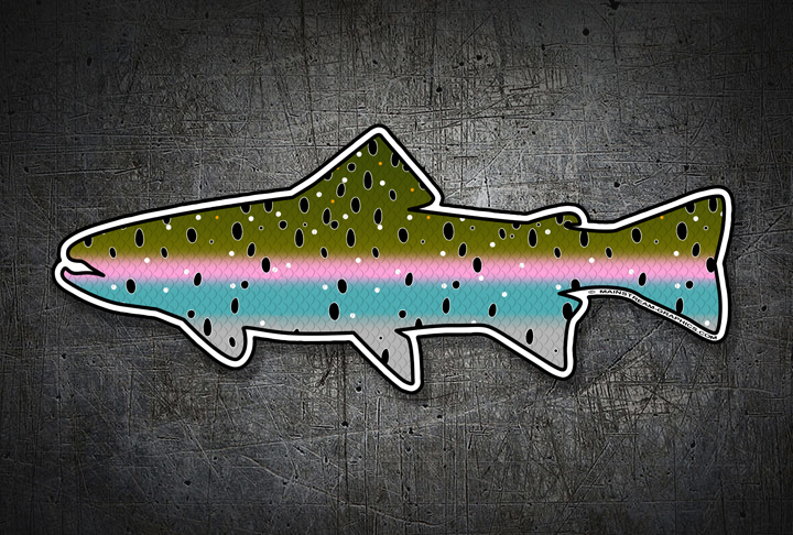 STEELHEAD_FISH_STICKER_WEB_TOP