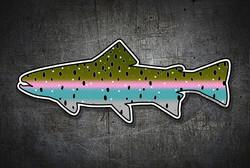 STEELHEAD_FISH_STICKER_WEB_TOP