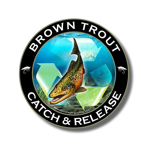 Catch & Release_BROWN