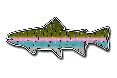 STEELHEAD_(Rainbow Trout)