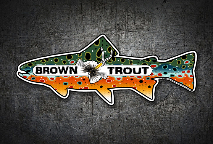 BROOK_TROUT_STICKER_WEB_TOP