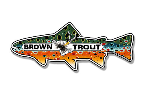 BROWN TROUT_FISH