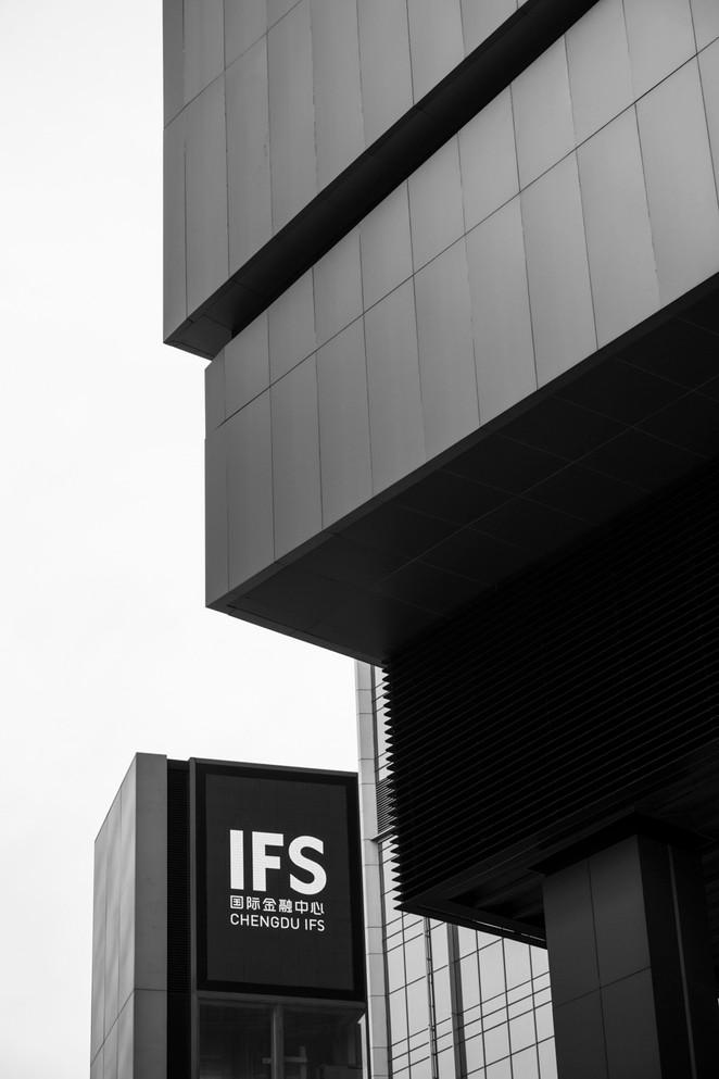 IFSbookWeb027.jpg