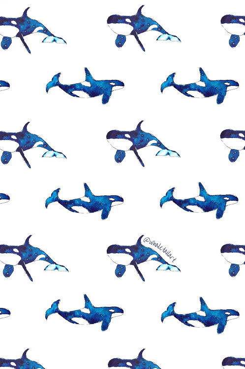 FREE DOWNLOAD Phone Background - Orca