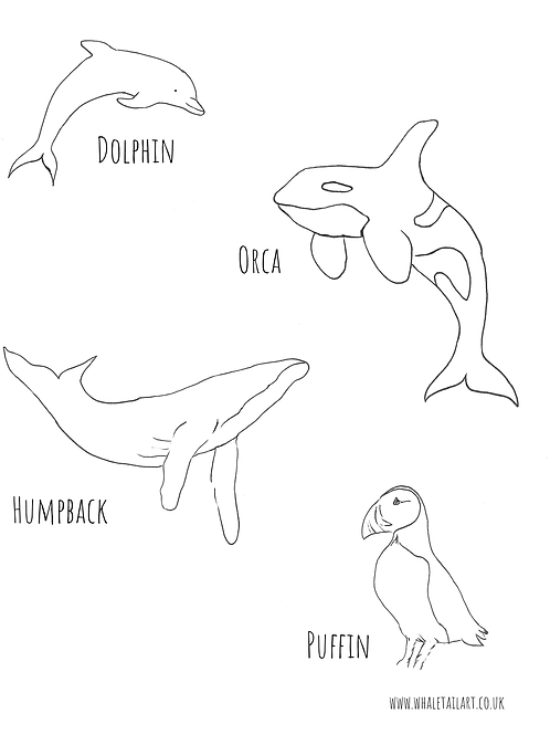 Free colour in sheets - Humpback, Orca, Puffin, Dolphin