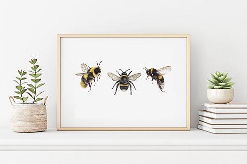 Bee trio print