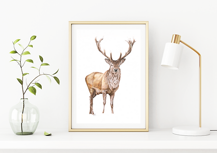 Laura Mary Art - Stag.png