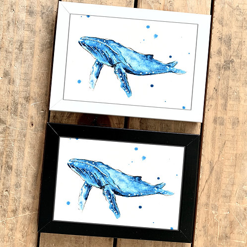 Humpback Whale Mini Watercolour Painting