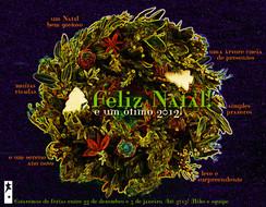 Cartão de Fim de Ano 2011