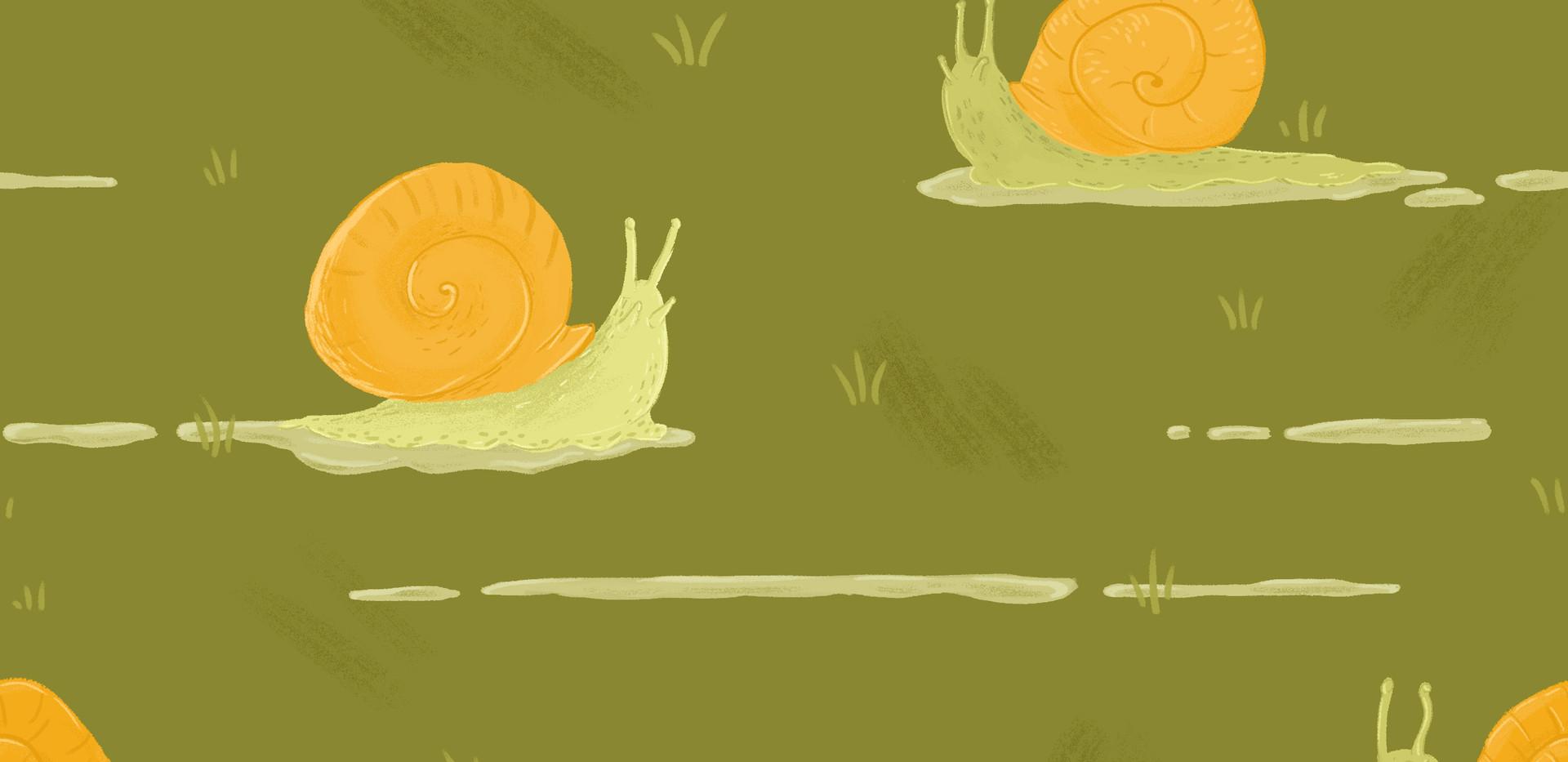 Snail Trail Pattern
