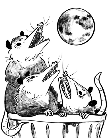 Three Possum Moon