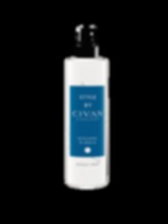 STYLE Seasalt Spray 250ml V2.png