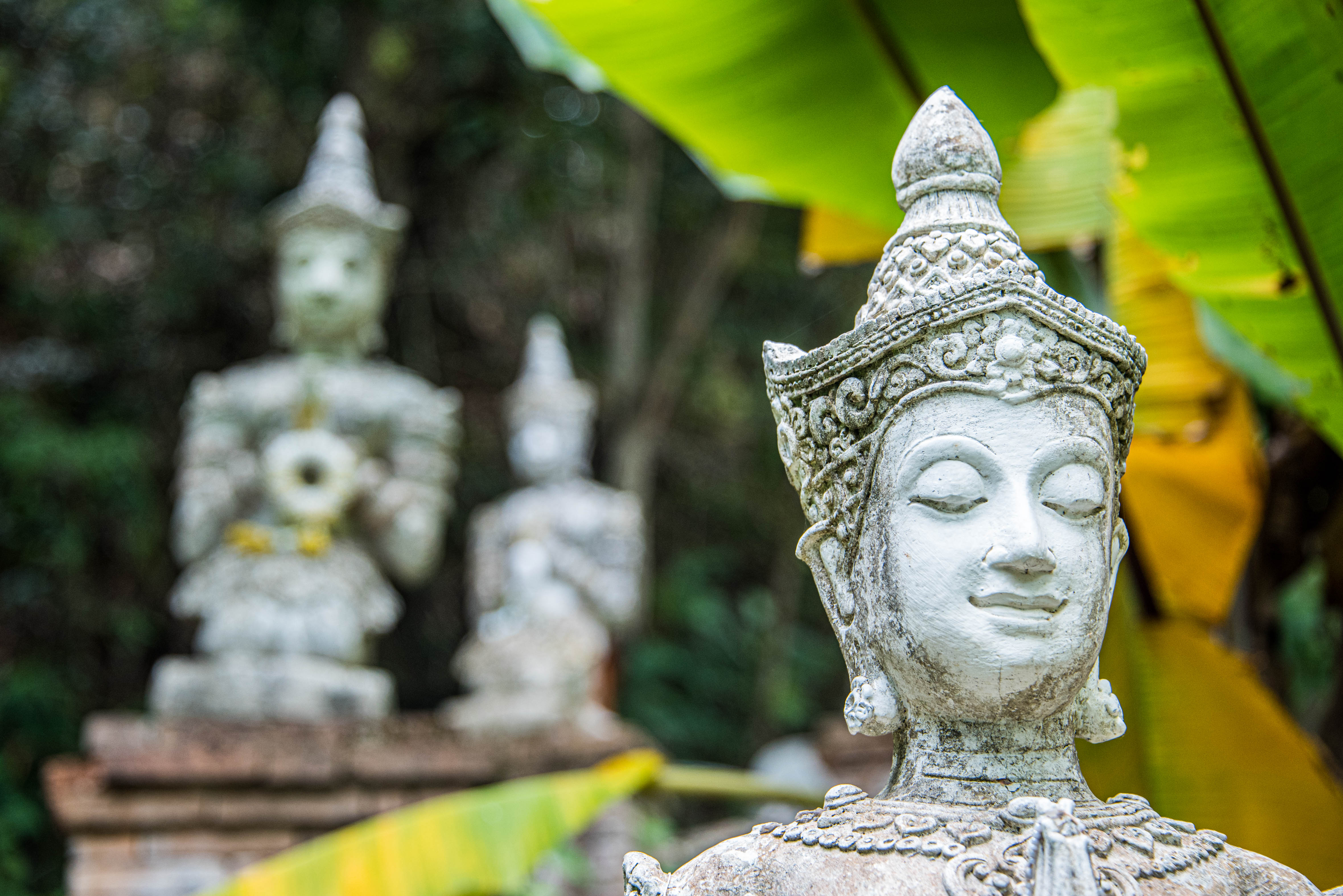 Thailand-3216