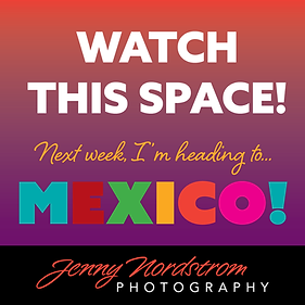 Mexico-announce-Instagram.png
