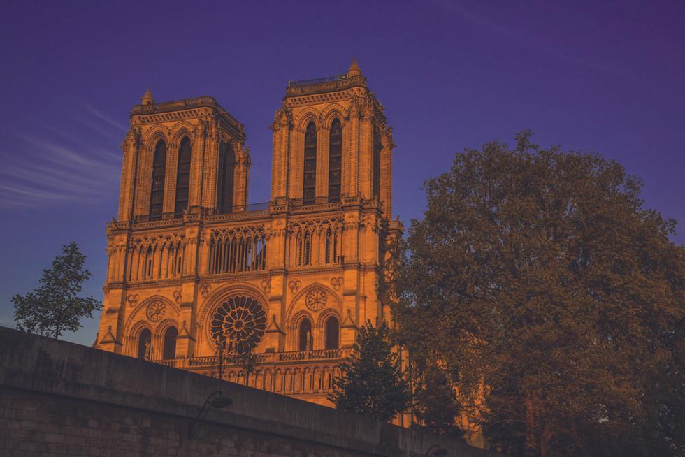 Paris-9354-2.jpg
