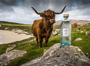 Isle-of-Harris-Gin.jpg