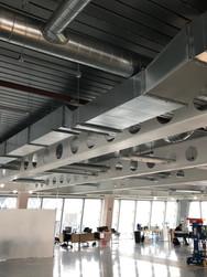 BDSL_Scalpel Building(4).jpeg