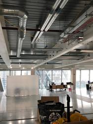 BDSL_Scalpel Building(7).jpeg
