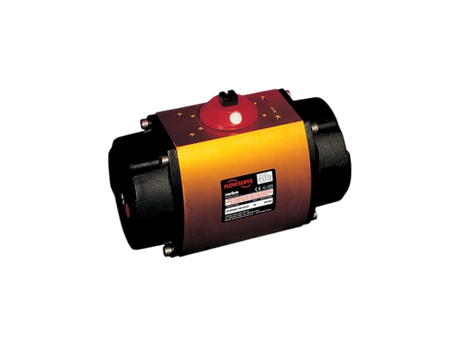 Flowserve Norbro Pneumatic Actuators