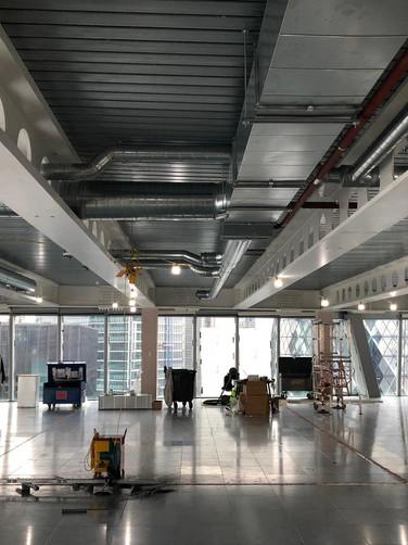 BDSL_Scalpel Building(3).jpeg