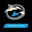 skyhawk surveillance.png