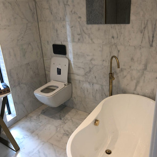 Toilet sanitaryware installation, London