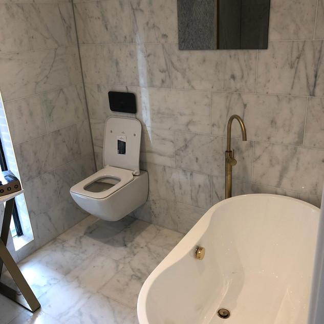 Toilet sanitaryware installation, London