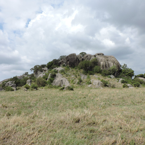 Rock in Serengeti