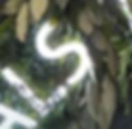 Screen Shot 2020-01-14 at 16.49.52.png