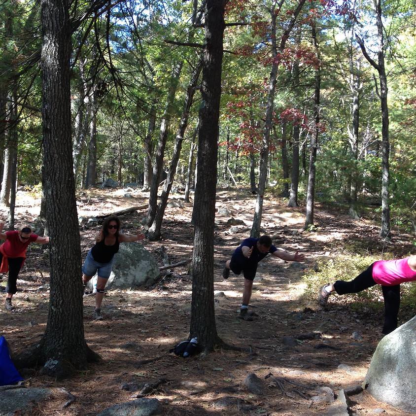 Trail Yoga/hike the Blue Hills Reservation