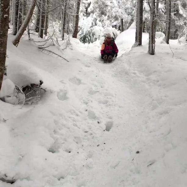 snowvideo.mp4