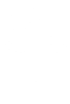 White-Leaf_Long_v3.png