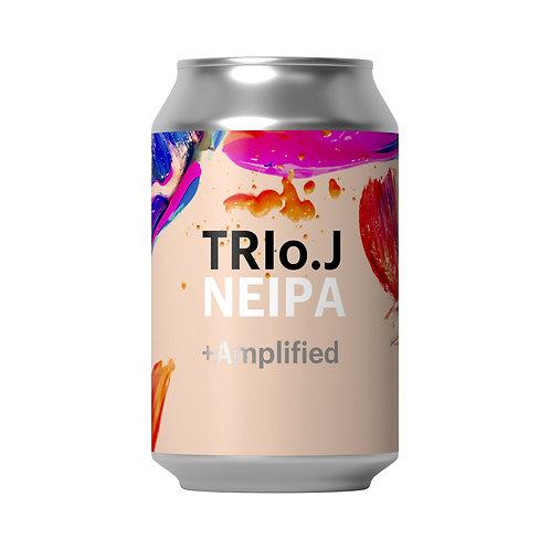 Lost+Found TRIo.J  23x330ml Cans