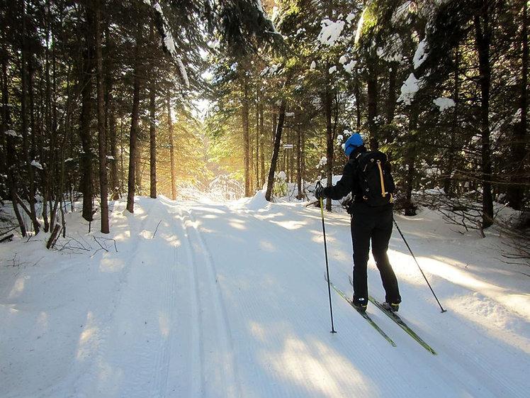 Cross-Country-Skiing_01.jpg