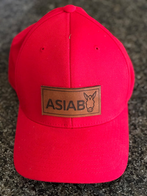 red hat with leather ASIAB patch