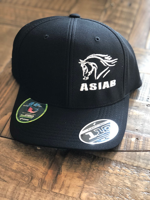 Black ASIAB-Horse Flexfit Hat