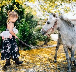 LaMorse aka our Unicorn