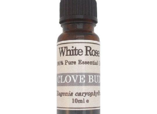 Clove Bud (Syzygium aromaticum)