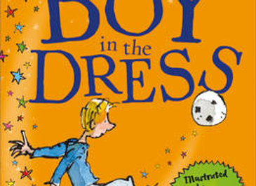The Boy In The Dress - David Walliams Paperback