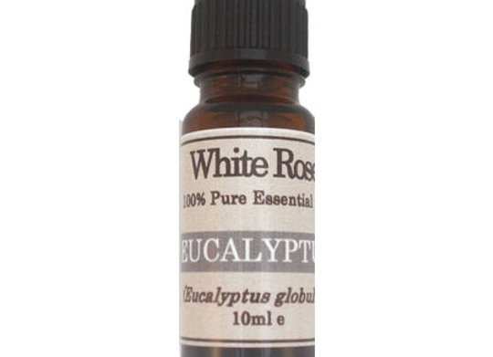 Eucalyptus 100% Pure Therapeutic Grade Essential Oil