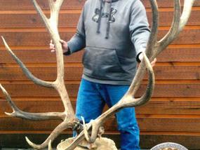 New World Record Elk Taken in Montana