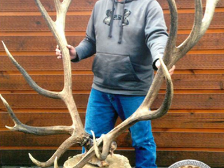 New World Record Elk Taken in Montana