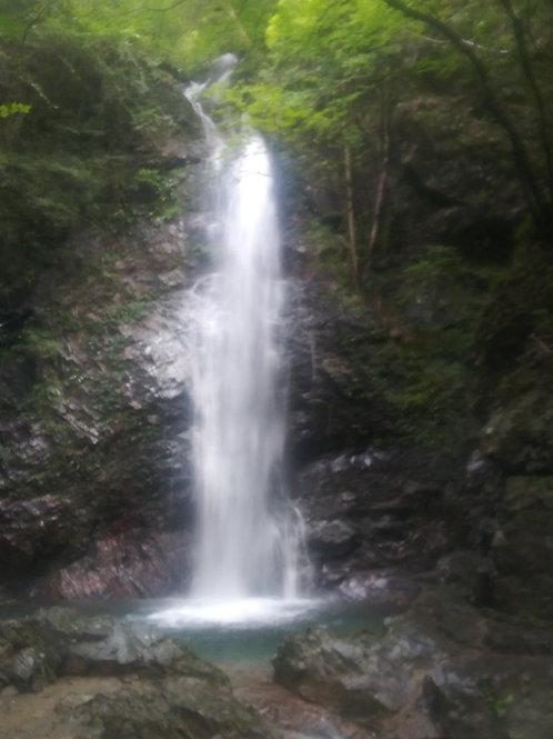サウンドアリア 2020年 檜原村 払沢の滝